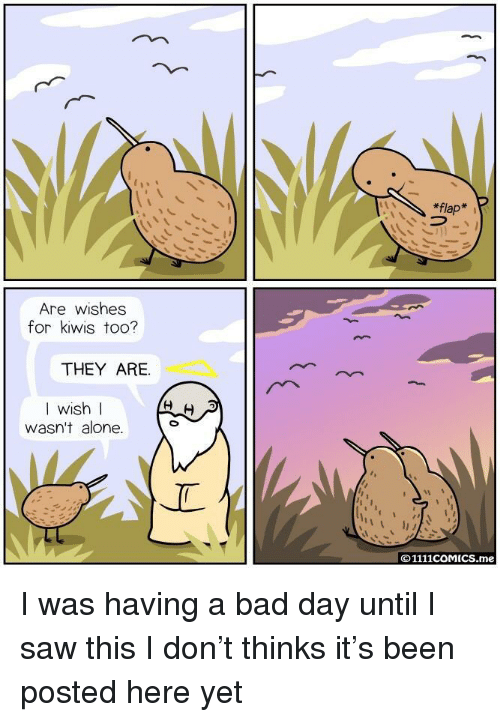 flap: *flap  Are wishes  for kiwis too?  THEY ARE.  I wish l  WIS  wasn't alone.  ©1111COMICS.me I was having a bad day until I saw this I don't thinks it's been posted here yet