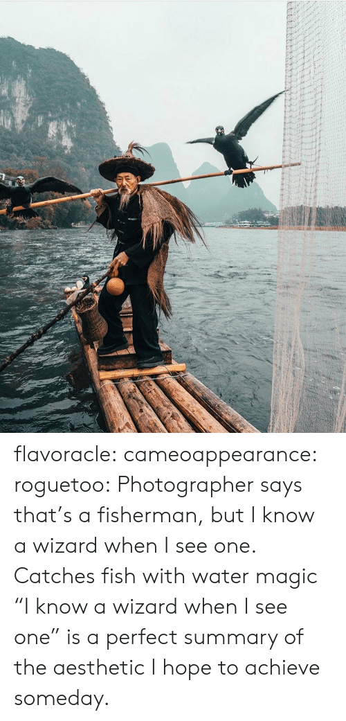 """Achieve: flavoracle: cameoappearance:  roguetoo: Photographer says that's a fisherman, but I know a wizard when I see one.  Catches fish with water magic   """"I know a wizard when I see one"""" is a perfect summary of the aesthetic I hope to achieve someday."""