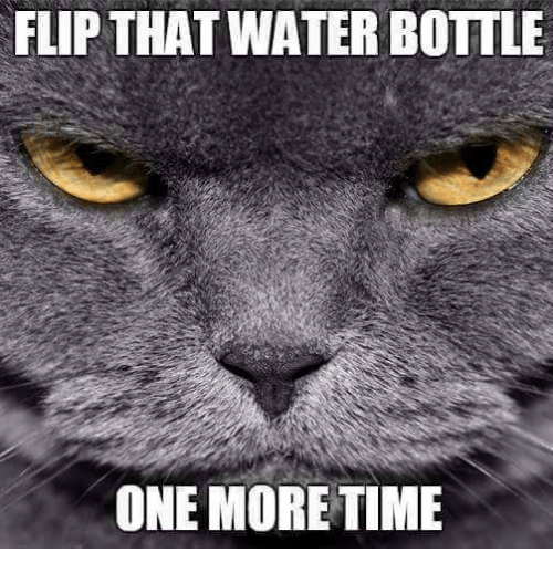 Image result for water bottle flip meme