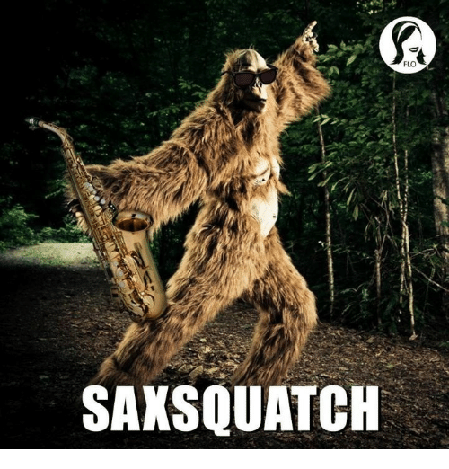 Flo: FLO  SAXSQUATCH