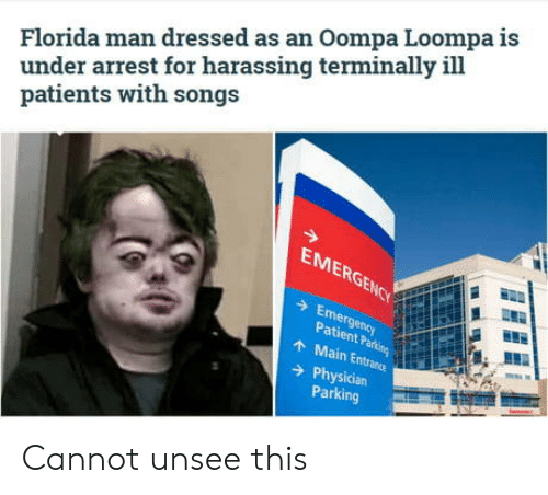Patients: Florida man dressed as an Oompa Loompa is  under arrest for harassing terminally ill  patients with songs  EMERGENCY  Emergency  Patient Parking  AMain Entrance  Physician  Parking Cannot unsee this