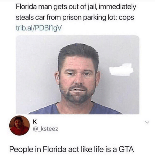 gta: Florida man gets out of jail, immediately  steals car from prison parking lot: cops  trib.al/PDBI19V  K  @ksteez  People in Florida act like life is a GTA