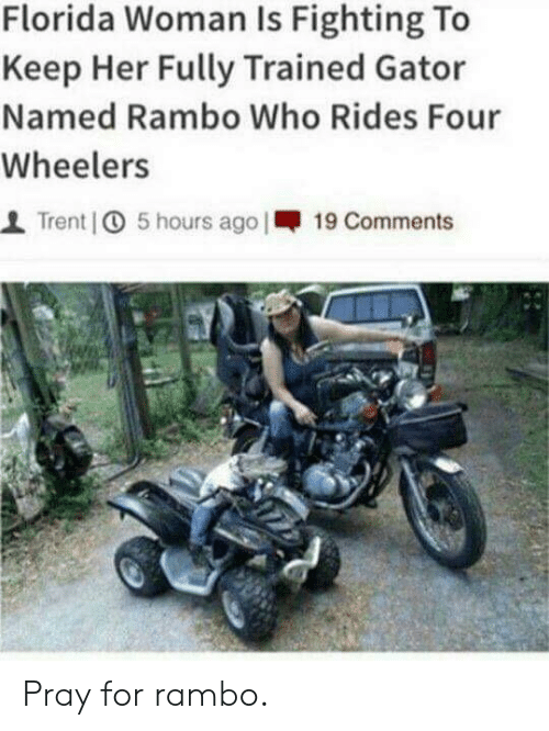 Rambo: Florida Woman Is Fighting To  Keep Her Fully Trained Gator  Named Rambo Who Rides Four  Wheelers  1 Trent   5 hours ago I-19 Comments Pray for rambo.