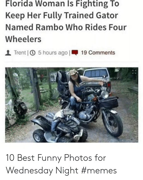 trent: Florida Woman Is Fighting To  Keep Her Fully Trained Gator  Named Rambo Who Rides Four  Wheelers  Trent 5 hours ago |19 Comments 10 Best Funny Photos for Wednesday Night #memes