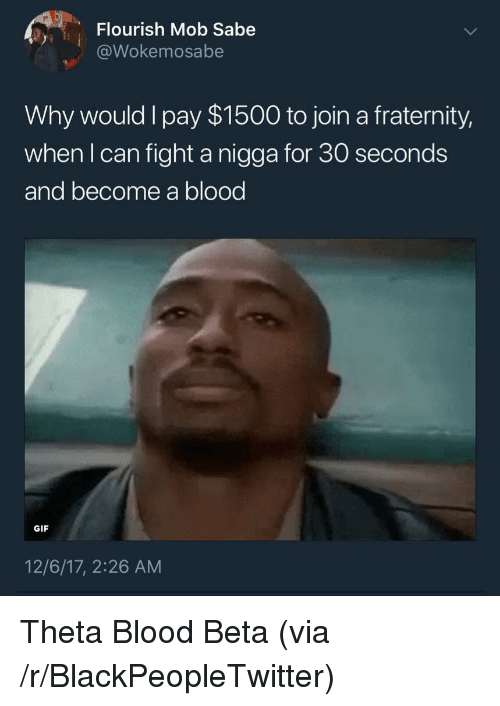 Blackpeopletwitter, Fraternity, and Gif: Flourish Mob Sabe  @Wokemosabe  Why would l pay $1500 to join a fraternity,  when l can fight a nigga for 30 seconds  and become a blood  GIF  12/6/17, 2:26 AM <p>Theta Blood Beta (via /r/BlackPeopleTwitter)</p>