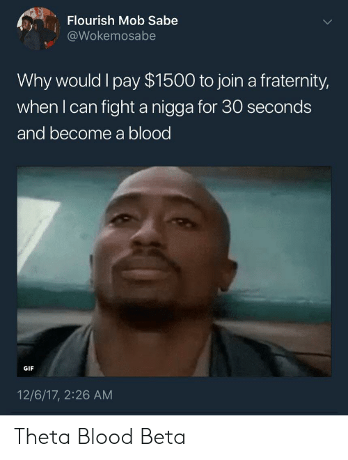 Fraternity: Flourish Mob Sabe  @Wokemosabe  Why would l pay $1500 to join a fraternity,  when l can fight a nigga for 30 seconds  and become a blood  GIF  12/6/17, 2:26 AM Theta Blood Beta