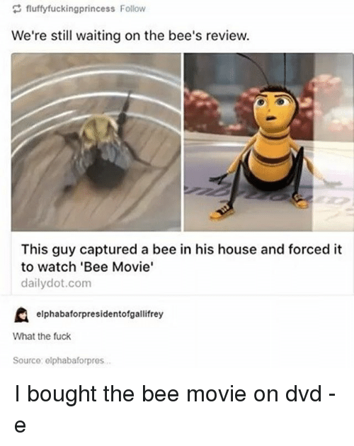 the bee movie: fluffyfuckingprincess Follow  We're still waiting on the bee's review.  This guy captured a bee in his house and forced it  to watch 'Bee Movie'  daily dot.com  elphabaforpresidentofgallifrey  What the fuck  Source: elphabaforpres. I bought the bee movie on dvd -e