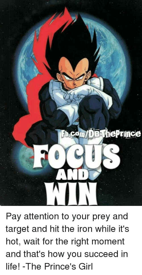Memes, Prince, and Target: FOCUS  AND  WIN Pay attention to your prey and target and hit the iron while it's hot, wait for the right moment and that's how you succeed in life! -The Prince's Girl