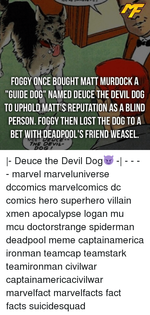 "weasels: FOGGY ONCE BOUGHT MATT MURDOCK A  ""GUIDE DOG NAMED DEUCE THE DEVIL DOG  TO UPHOLD MATT'S REPUTATION AS A BLIND  PERSON. FOGGY THEN LOST THE DOG TO A  BET WITH DEADPOOL'S FRIEND WEASEL.  THE DEVIL- 