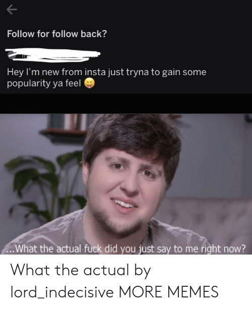 follow for follow: Follow for follow back?  Hey I'm new from insta just tryna to gain some  popularity ya feel  .What the actual fuck did you just say to me right now? What the actual by lord_indecisive MORE MEMES