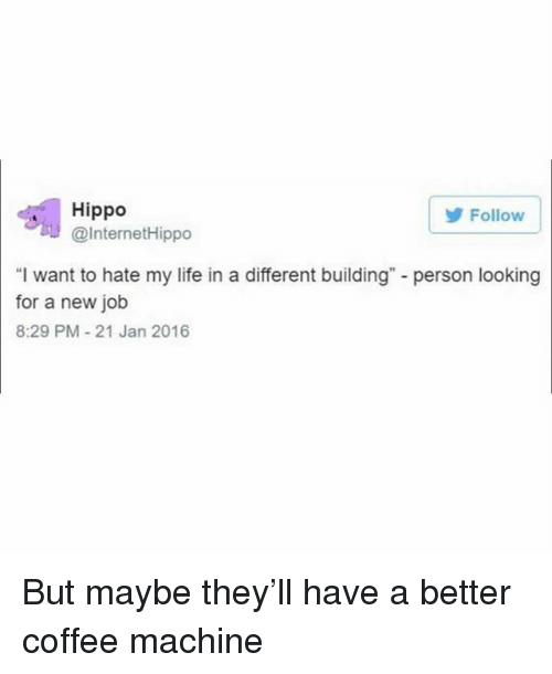 "Life, Coffee, and Girl Memes: Follow  Hippo  @InternetHippo  ""I want to hate my life in a different building"" - person looking  for a new job  8:29 PM-21 Jan 2016 But maybe they'll have a better coffee machine"