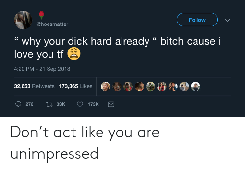 """sep: Follow  @hoesmatter  why your dick hard already """" bitch cause i  love you tf  4:20 PM -21 Sep 2018  32,653 Retweets 173,365 Likes  Li33K  276  173K Don't act like you are unimpressed"""