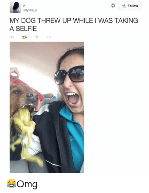 Memes, Selfie, and 🤖: ' Follow  lykke l  MY DOG THREW UP WHILE I WAS TAKING  A SELFIE 😂Omg