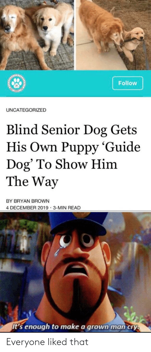 senior: Follow  UNCATEGORIZED  Blind Senior Dog Gets  His Own Puppy 'Guide  Dog' To Show Him  The Way  BY BRYAN BROWN  4 DECEMBER 2019 · 3-MIN READ  It's enough to make a grown man cry. Everyone liked that
