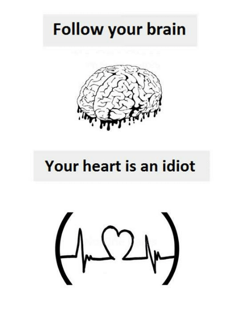 Brain, Heart, and Idiot: Follow your brain  Your heart is an idiot