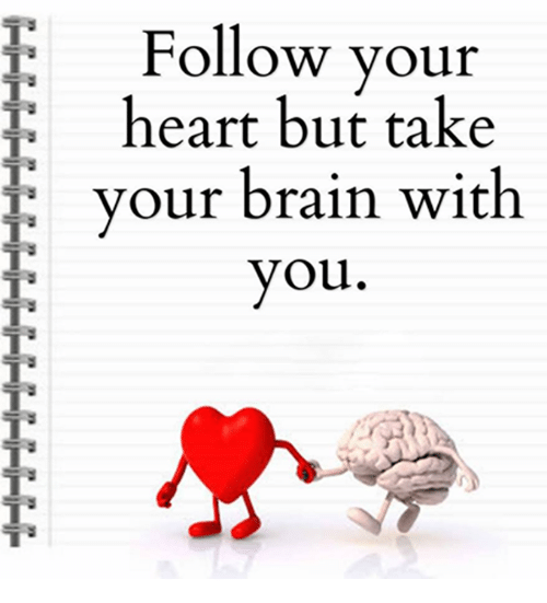 Follow Your Heart Movie HD free download 720p