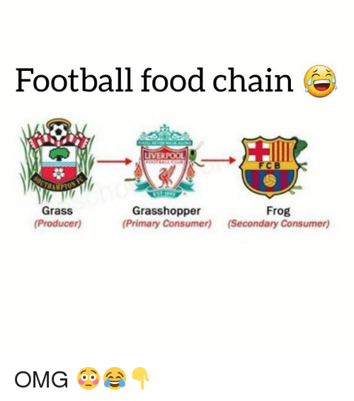Food, Football, and Omg: Football food chain  LIVERPOOL  FCB  Grass  (Producer)  Grasshopper  (Primary Consumer)  Frog  (Secondary Consumer) OMG 😳😂👇