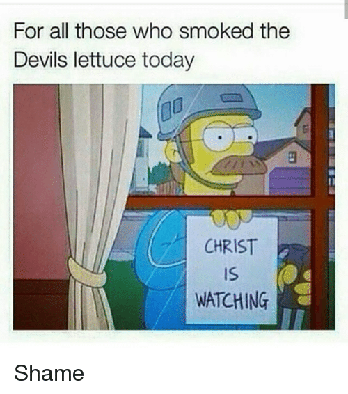 Funny, Today, and Who: For all those who smoked the  Devils lettuce today  CHRIST  WATCHING Shame