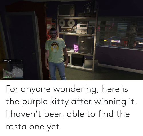 rasta: For anyone wondering, here is the purple kitty after winning it. I haven't been able to find the rasta one yet.