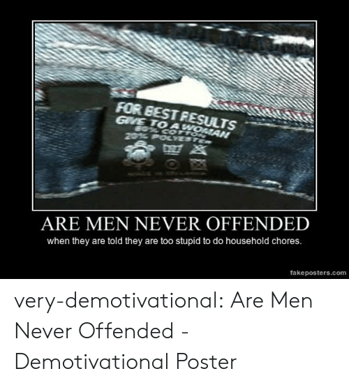 demotivational: FOR EEST RESULTS  GVE TO A  ARE MEN NEVER OFFENDED  when they are told they are too stupid to do household chores.  fakeposters.com very-demotivational:  Are Men Never Offended - Demotivational Poster