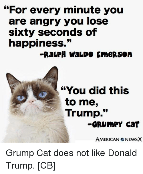 "Trump Grumpy Cat: ""For every minute you  are angry you lose  sixty seconds of  happiness.""  ""'You did this  to me  Trump  GRUMPY CAT  AMERICAN NEWSX Grump Cat does not like Donald Trump.  [CB]"