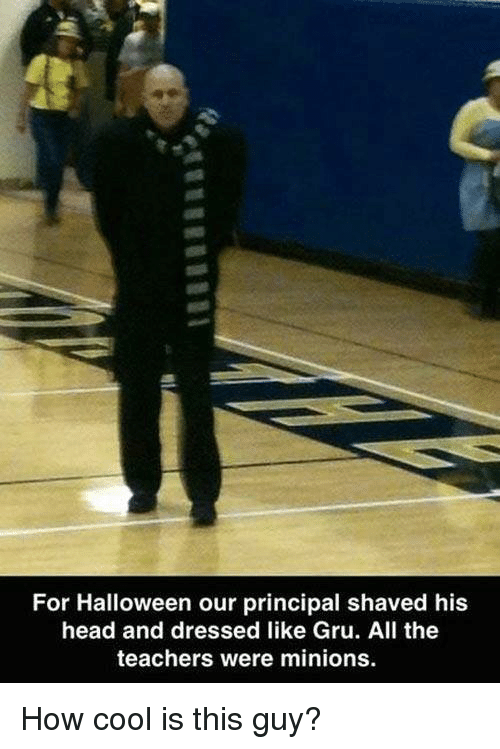 Gru: For Halloween our principal shaved his  head and dressed like Gru. All the  teachers were minions. How cool is this guy?