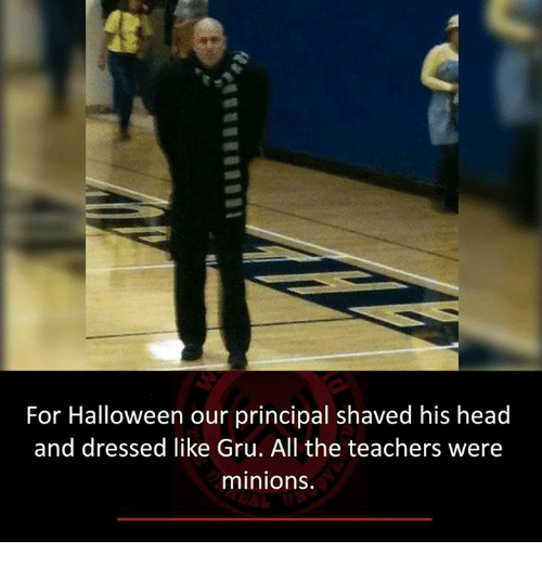 Gru: For Halloween our principal shaved his head  and dressed like Gru. All the teachers were  minions.