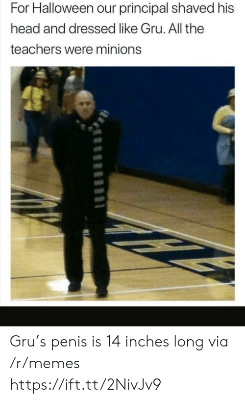 Gru: For Halloween our principal shaved his  head and dressed like Gru. All the  teachers were minions Gru's penis is 14 inches long via /r/memes https://ift.tt/2NivJv9