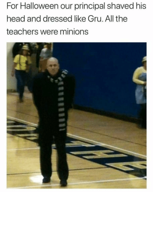 Principal: For Halloween our principal shaved his  head and dressed like Gru. All the  teachers were minions Now that's how you win Halloween by ashutosh__badetia MORE MEMES