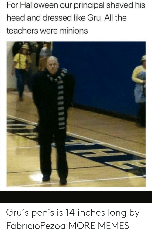 Principal: For Halloween our principal shaved his  head and dressed like Gru. All the  teachers were minions Gru's penis is 14 inches long by FabricioPezoa MORE MEMES