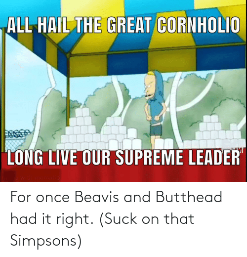 beavis: For once Beavis and Butthead had it right. (Suck on that Simpsons)