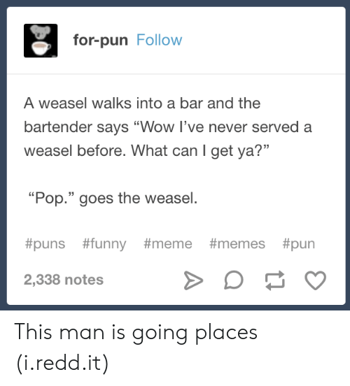 """Meme Memes: for-pun Follow  A weasel walks into a bar and the  bartender says """"Wow I've never served a  weasel before. What can I get ya?""""  13  """"Pop."""" goes the weasel.  #puns #funny #meme #memes #pun  2,338 notes This man is going places (i.redd.it)"""