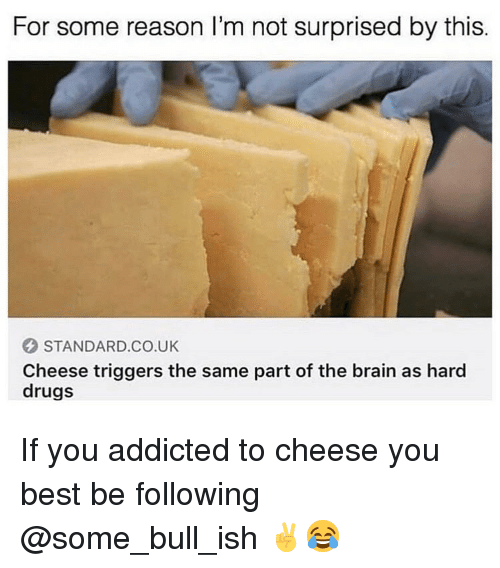 Drugs, Addicted, and Best: For some reason l'm not surprised by this.  STANDARD.CO.UK  Cheese triggers the same part of the brain as hard  drugs If you addicted to cheese you best be following @some_bull_ish ✌️😂