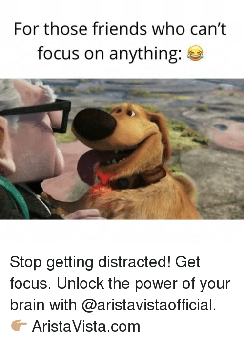 Friends, Memes, and Brain: For those friends who can't  focus on anything Stop getting distracted! Get focus. Unlock the power of your brain with @aristavistaofficial. 👉🏽 AristaVista.com