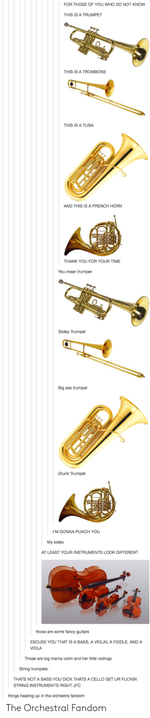 You Dick: FOR THOSE OF YOU WHO DO NOT KNOW  THIS IS A TRUMPET  THIS IS A TROMBONE  THIS IS A TUBA  AND THIS IS A FRENCH HORN  THANK YOU FOR YOUR TIME  You mean trumpet  Slidey Trumpet  Big ass trumpet  Drunk Trumpet  I'M GONNA PUNCH YOU  My sides  AT LEAST YOUR INSTRUMENTS LOOK DIFFERENT  those are some fancy guitars  EXCUSE YOU THAT IS A BASS, A VIOLIN, A FIDDLE, ANDA  VIOLA  Those are big mama violin and her little violings  String trumpets.  THATS NOT A BASS YOU DICK THATS A CELLO GET UR FUCKIN  STRING INSTRUMENTS RIGHT JFC  things heating up in the orchestra fandom The Orchestral Fandom
