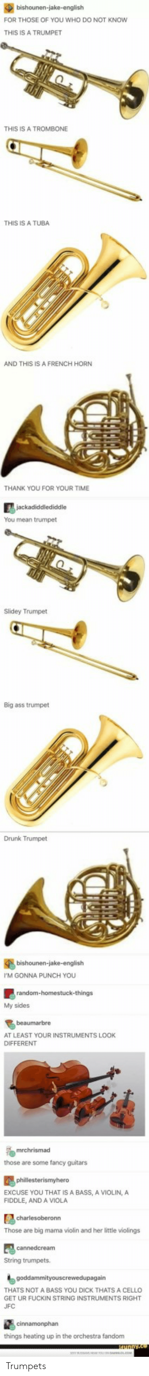 You Dick: FOR THOSE OF YOU WHO DO NOT KNOW  THIS IS A TRUMPET  THIS IS A TROMBONE  THIS IS A TUBA  AND THIS IS A FRENCH HORN  THANK YOU FOR YOUR TIME  You mean trumpet  Slidey Trumpet  Big ass trumpet  Drunk Trumpet  bishounen-jake-english  M GONNA PUNCH YOU  My sides  beaumarbre  AT LEAST YOUR INSTRUMENTS LOOK  DIFFERENT  those are some fancy guitars  EXCUSE YOU THAT IS A BASS, A VIOLIN, A  FIDDLE, AND A VIOLA  Those are big mama violin and her little violings  String trumpets.  THATS NOT A BASS YOU DICK THATS A CELLO  GET UR FUCKIN STRING INSTRUMENTS RIGHT  UFC  things heating up in the orchestra fandonm Trumpets