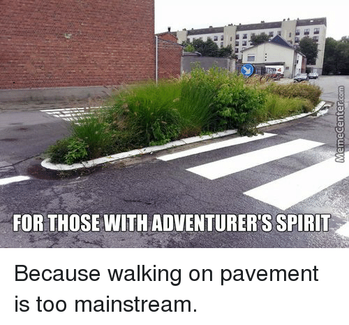 Too Mainstream: FOR THOSE WITH ADVENTURERS SPIRIT Because walking on pavement is too mainstream.