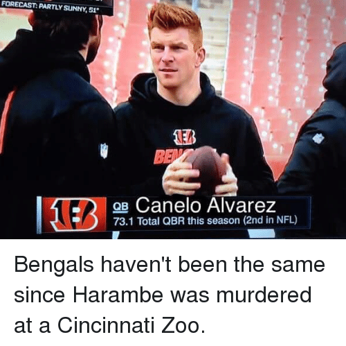 Nfl, Bengals, and Forecast: FORECAST: PARTLY SUNNY,51  QB Canelo Alvarez  73.1 Total QBR this season (2nd in NFL) Bengals haven't been the same since Harambe was murdered at a Cincinnati Zoo.