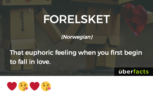 Memes, Uber, and Norwegian: FORELSKET  (Norwegian)  That euphoric feeling when you first begin  to fall in love.  uber  facts ❤️😘❤️😘