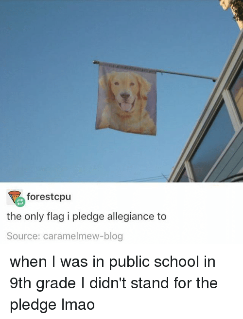 Lmao, Memes, and School: forest cpu  the only flag i pledge allegiance to  Source: caramelmew-blog when I was in public school in 9th grade I didn't stand for the pledge lmao