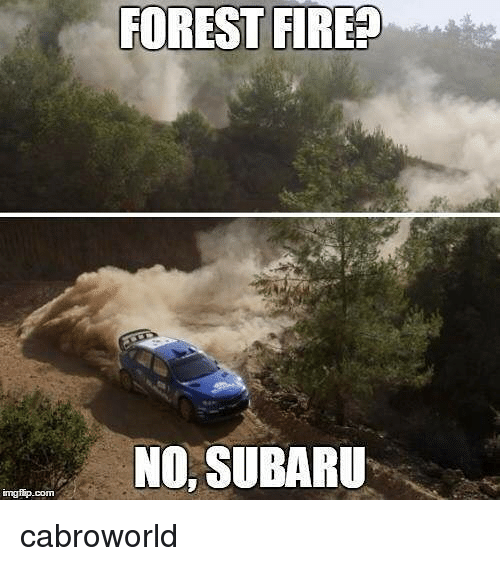 Fire, Subaru, and Forest: FOREST FIRE  NO, SUBARU cabroworld