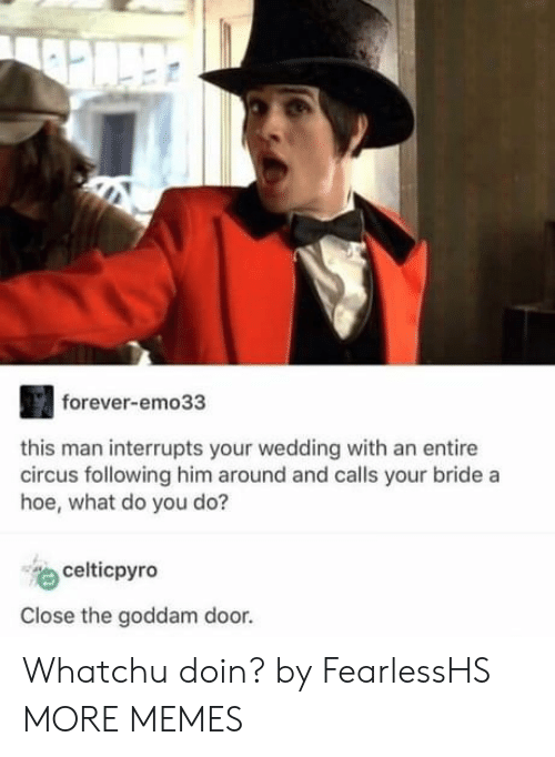 Whatchu: forever-emo33  this man interrupts your wedding with an entire  circus following him around and calls your bride a  hoe, what do you do?  celticpyro  Close the goddam door. Whatchu doin? by FearlessHS MORE MEMES