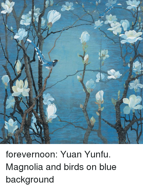 magnolia: forevernoon: Yuan Yunfu.                                                               Magnolia and birds on blue background
