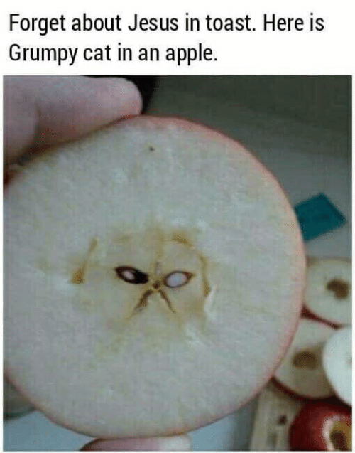 Grumpy Cat: Forget about Jesus in toast. Here is  Grumpy cat in an apple.