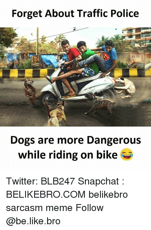 Be Like, Dogs, and Meme: Forget About Traffic Police  Dogs are more Dangerous  while riding on bike Twitter: BLB247 Snapchat : BELIKEBRO.COM belikebro sarcasm meme Follow @be.like.bro