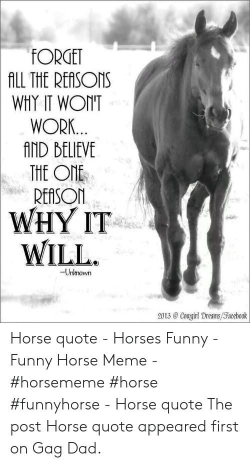 Horse Meme: FORGET  ALL THE REASONS  WHY IT WONT  WORK...  AND BELIEVE  THE ONE  REASON  WHY IT  WILL  -Unknown  2013 @ Cougirl Dreams/Facebook Horse quote - Horses Funny - Funny Horse Meme - #horsememe #horse #funnyhorse -  Horse quote  The post Horse quote appeared first on Gag Dad.