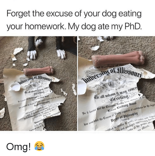 ied: Forget the excuse of your dog eating  your homework. My dog ate my PhD  cetint  o all whow it an ruucr  Hreetii  b e  e it  hat the Curators, havng bees nouis  d the Course of Suay reqguirrd of cmbidatrs for the degn  ied to recein  in  re of the prop i Omg! 😂