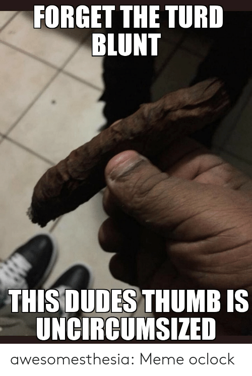 turd: FORGET THE TURD  BLUNT  THIS DUDES THUMB IS  UNCIRCUMSIZED awesomesthesia:  Meme oclock