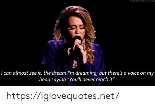 "dreaming: FORGIUENESSANDLOUEJM  29  I can almost see it, the dream I'm dreaming, but there's a voice on my  head saying ""You'll never reach it"". https://iglovequotes.net/"