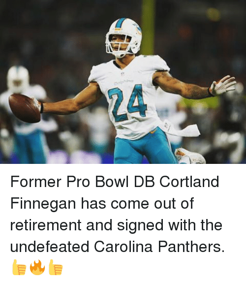 carolina panther: Former Pro Bowl DB Cortland Finnegan has come out of retirement and signed with the undefeated Carolina Panthers. 👍🔥👍